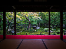 禅宗从Tatami室的庭院视图 免版税库存照片