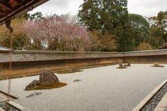 禅宗Ryoanji寺庙的假山花园春天 免版税库存照片