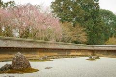 禅宗Ryoanji寺庙的假山花园春天 库存图片