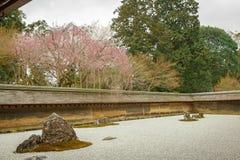 禅宗Ryoanji寺庙的假山花园春天 库存照片