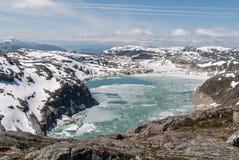 福尔格冰川在挪威 免版税库存照片