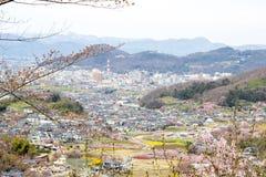 福岛市, Mt Azuma,多色开花的树如被看见从Hanamiyama公园,福岛, Tohoku,日本 免版税图库摄影