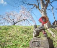 福岛,日本- 4月15,2016 :Fushimi inari石头狐狸瓜达区w 免版税库存图片