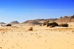 离开埃及西部的撒哈拉大沙漠 库存图片