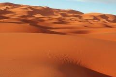 离开撒哈拉大沙漠 免版税库存照片