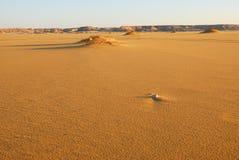 离开撒哈拉大沙漠 库存图片