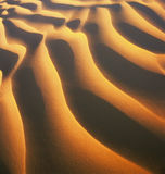 离开沙丘 库存照片