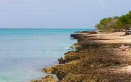 离开的海滩,阿鲁巴 与岩石的海滩 免版税图库摄影