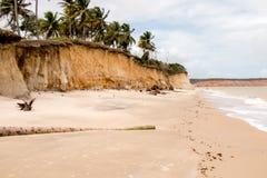离开的舒展海滩 免版税库存照片