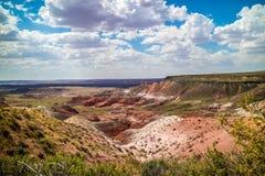 离开美丽的化石森林国家公园的风景,亚利桑那 免版税库存照片