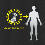 禽流感传染媒介商标象 库存照片