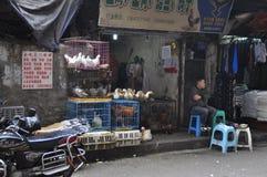 活禽畜购物 图库摄影