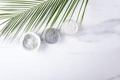 秀丽做法和使用不同的化妆黏土的概念 黑,蓝色和白色化妆黏土,作为a的异乎寻常的叶子顶视图  免版税库存图片