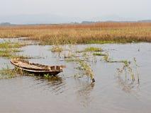 秀丽全景板钳老小船狂放的纸莎草沼泽 库存图片