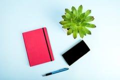 秀丽博克概念照片 绿色植物、笔记本、笔和手机在蓝色背景 免版税库存图片