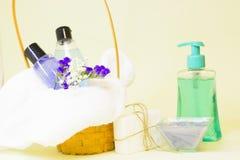 秀丽和温泉概念用淡紫色 免版税库存图片