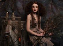 秀丽和艺术概念:有明亮的妇女用干燥分支,演播室射击组成 库存照片