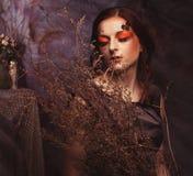 秀丽和艺术概念:有明亮的少妇用干燥分支组成 图库摄影
