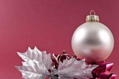 秀丽圣诞节 免版税库存照片