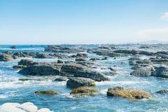 秀丽在半岛Kaikoura南岛新西兰的岩石海滩 库存图片