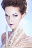 秀丽在蓝色背景的时尚妇女 冬天 库存图片