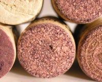 秀丽墨尔乐红葡萄酒 库存图片