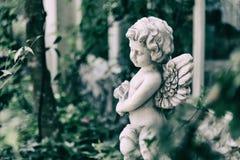 秀丽天使丘比特雕象在葡萄酒庭院里在夏天 Holdin 免版税库存照片