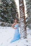 秀丽女孩在冬天森林里 免版税库存图片