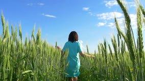 秀丽女孩在多云天空的一块麦田跑 股票视频