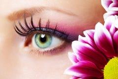 秀丽女性眼睛构成 免版税库存图片