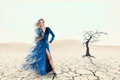 秀丽妇女的画象蓝色礼服的 免版税库存照片