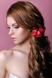 秀丽式样妇女面孔 理想的皮肤 应用光泽嘴唇组成专业人员 库存图片