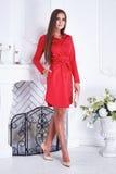 秀丽性感的妇女给编目样式时尚红色礼服穿衣 免版税图库摄影