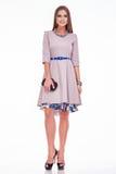 秀丽时髦的女服丝绸礼服时尚样式神色事务给偶然穿衣有长的brunett的见面和党性感的妇女的 库存图片