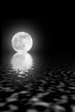 秀丽月亮 免版税库存图片