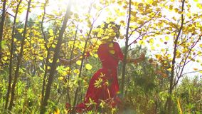 秀丽浪漫微笑的少妇剪影长的红色礼服的在日落的森林里 美丽的愉快的女性 股票录像