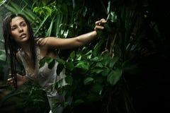 秀丽深色的森林雨性感的年轻人 库存照片