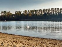 秀丽渔夫湖横向本质安排沈默 免版税库存照片