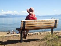秀丽湖全景风景tahoe 免版税库存图片
