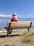 秀丽湖风景tahoe 库存照片