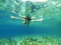 秀丽潜水 库存照片