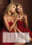 秀丽白肤金发的妇女,日历 库存照片