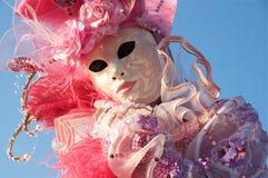 秀丽粉红色 库存照片