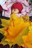 秀丽胸口孩子,新出生,睡觉特写镜头 免版税库存图片