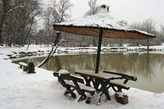 秀丽自然冬天 免版税库存照片