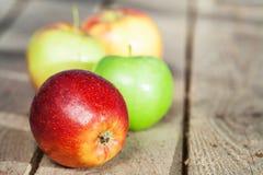 秀丽苹果 图库摄影