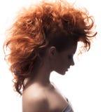 秀丽画象。发型 免版税图库摄影