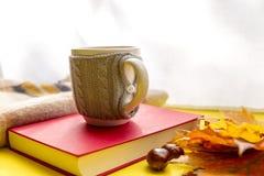 秋叶、书、栗子、围巾和杯子热巧克力 秋季、业余时间和咖啡休息概念 库存图片