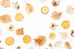 秋叶、干玫瑰和桔子的秋天概念在白色背景 平的位置,顶视图 库存图片