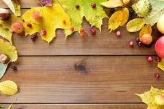 秋叶、果子和莓果框架在木头 库存图片